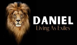 Daniel_Feat Img