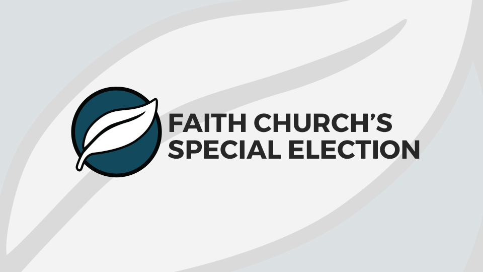 SpecialElection_FI
